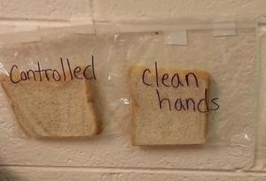 This sandwich experiment will make your child want to wash their dirty hands