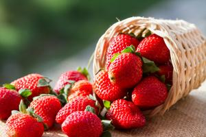 Its STRAWBERRY season! 12 recipes to celebrate the first harvest of the year