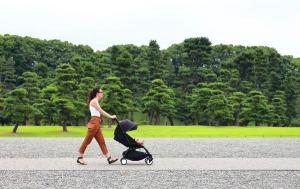 Prams: helpful or harmful? Study links prams to pollution exposure