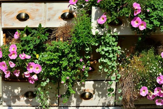Shoe Organiser Garden